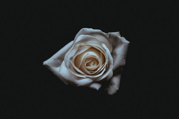 obsèques-volontés-souhaits-famille
