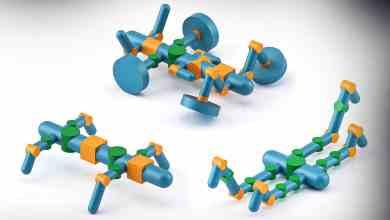Photo of نظام يحدد الشكل الأمثل للروبوتات