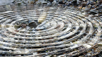 image of ripples in a pond - for Dorren Dembski Communication Services leadership communication