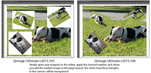 Qimage Ultimate - Downloads