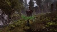 ddmsrealm-neverwinter-ranger-guide-aeo2