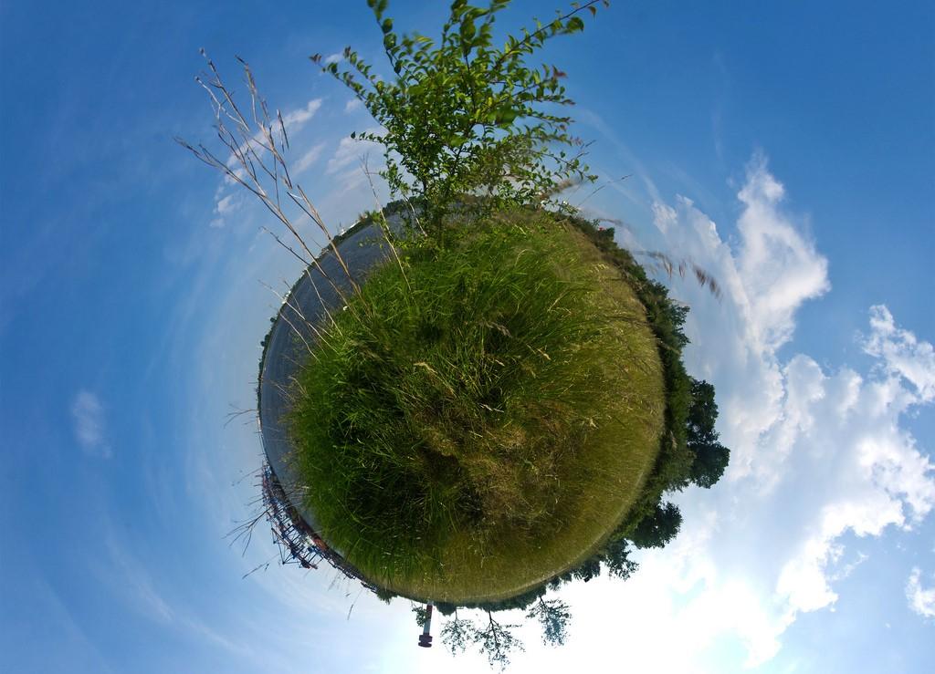 Milieuprestatie groene wereld