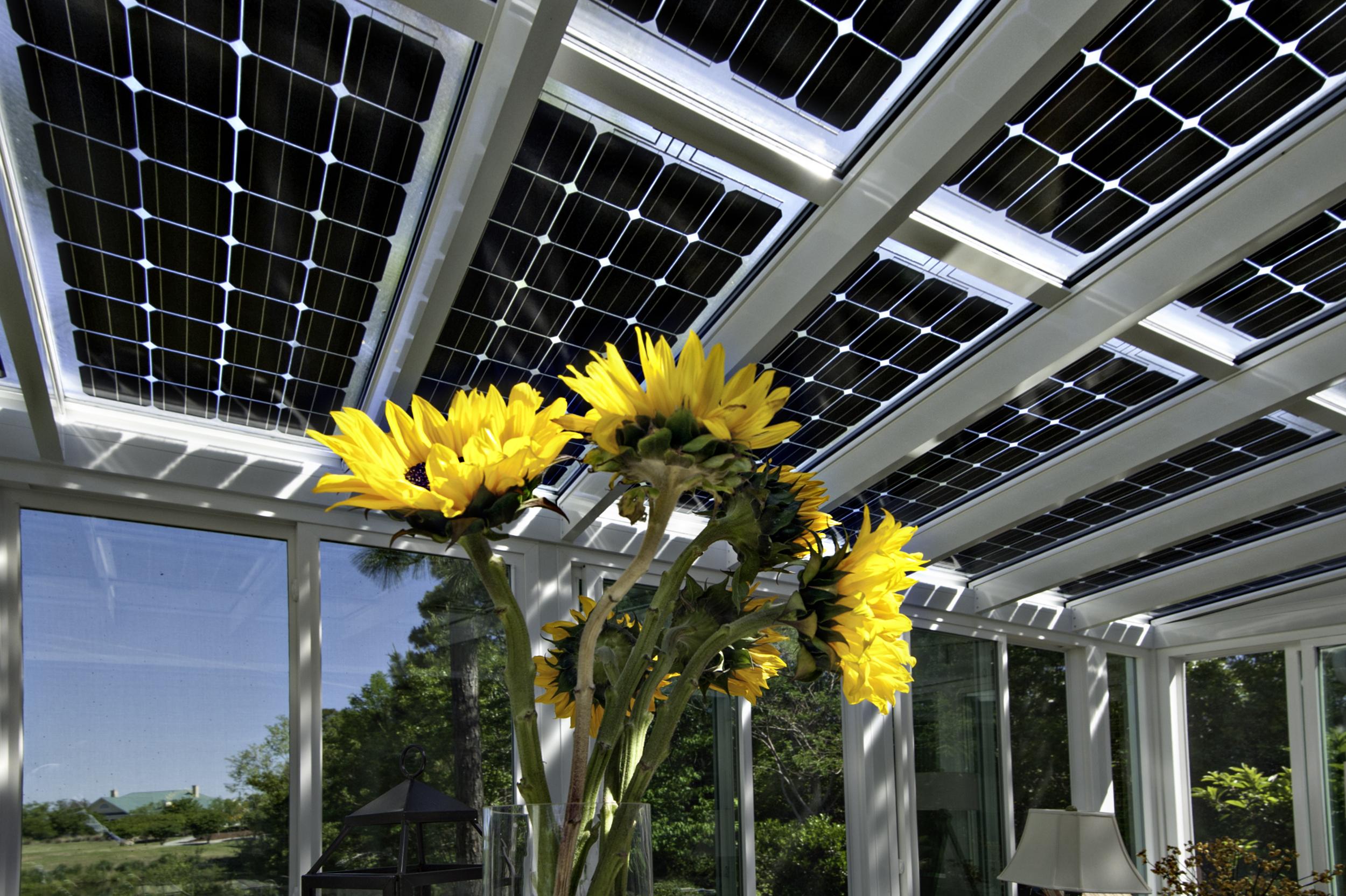 Vijf redenen waarom zonnepanelen interessant zijn