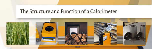 The Structure and Function of Calorimeters