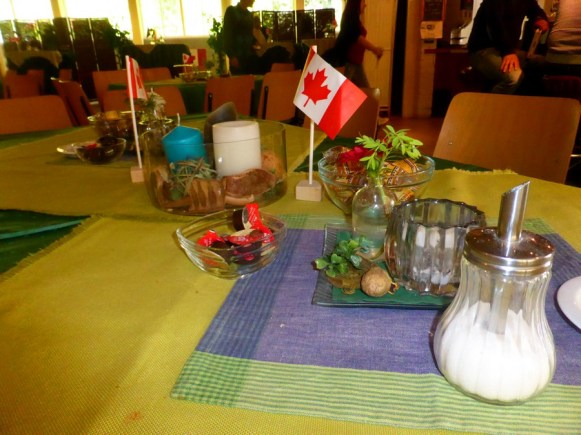 Farewell Party Canadian Club 2017 (3)