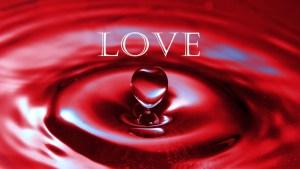 THE LOVE TANK 6