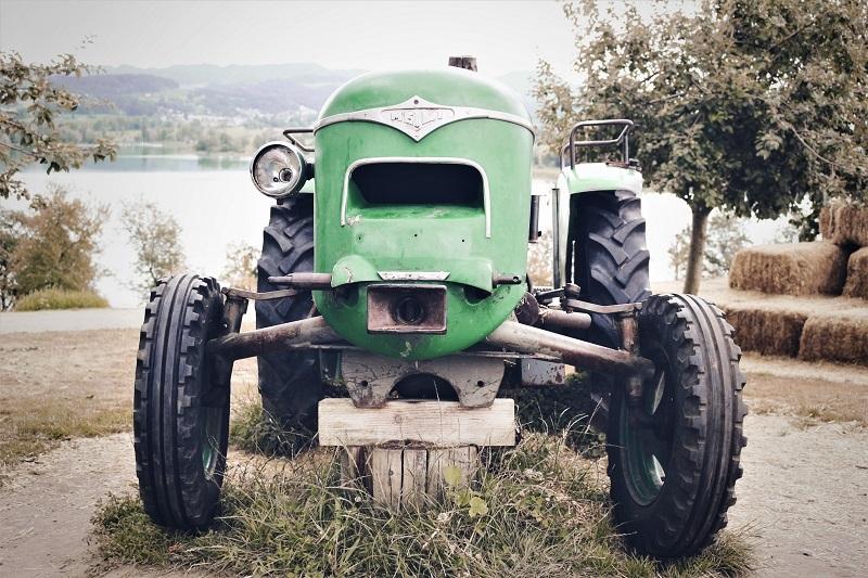 Agrarisch Verleden Herleeft Toldijk Unsplash