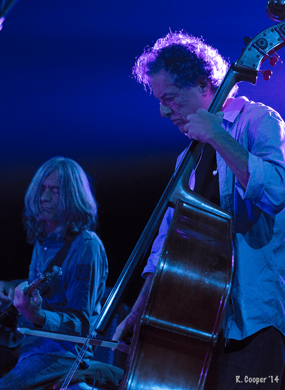 RatDog Phoenix 2014 RCooper Photo (9)