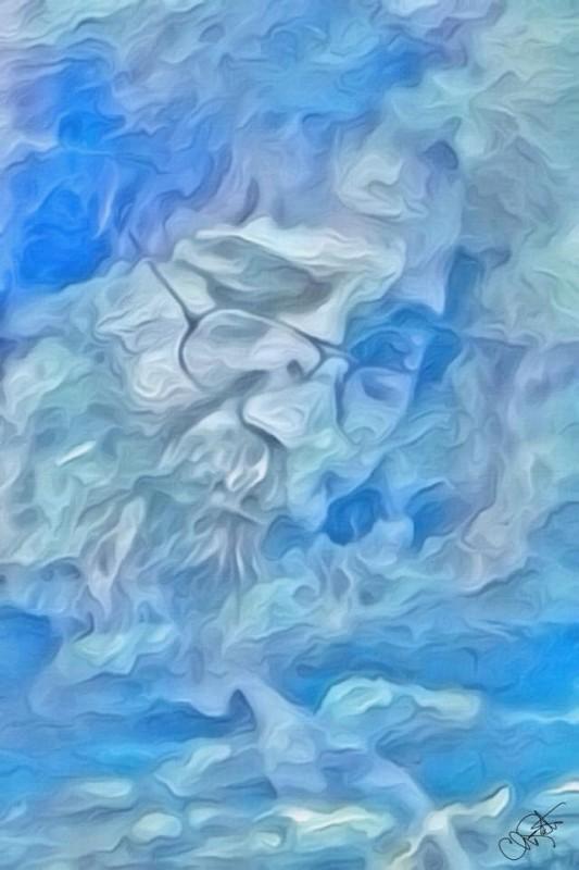 Jerry Garcia - chris kraft