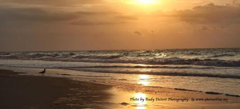 Sunset over rolling waves on a beach