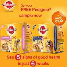 Wer4pets - Get free Pedigree Dogs food sample worth Rs 100