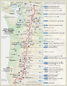 pct_overview_2pg-2