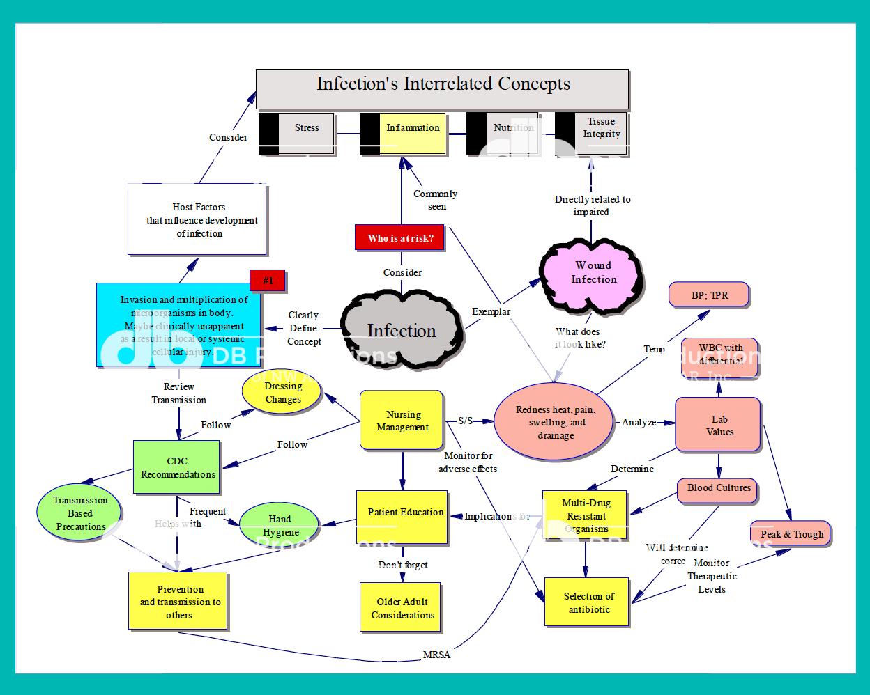Infection Concept Map Deanne Blach