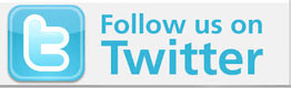 follow on Twitter button