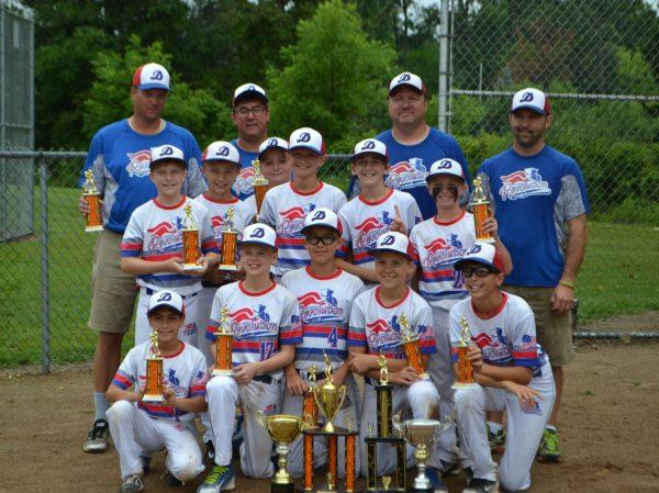 Dearborn Baseball – Dearborn Baseball and Fastpitch ...