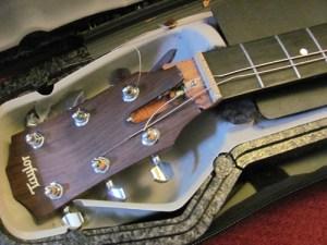 United Break Guitars Broken Taylor Guitar