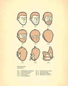 beardfly