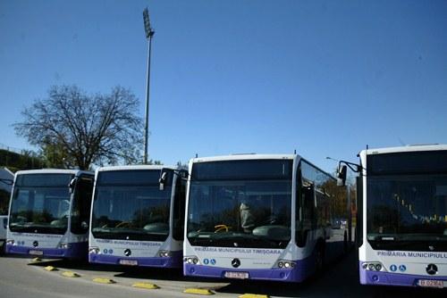 autobuze ratt