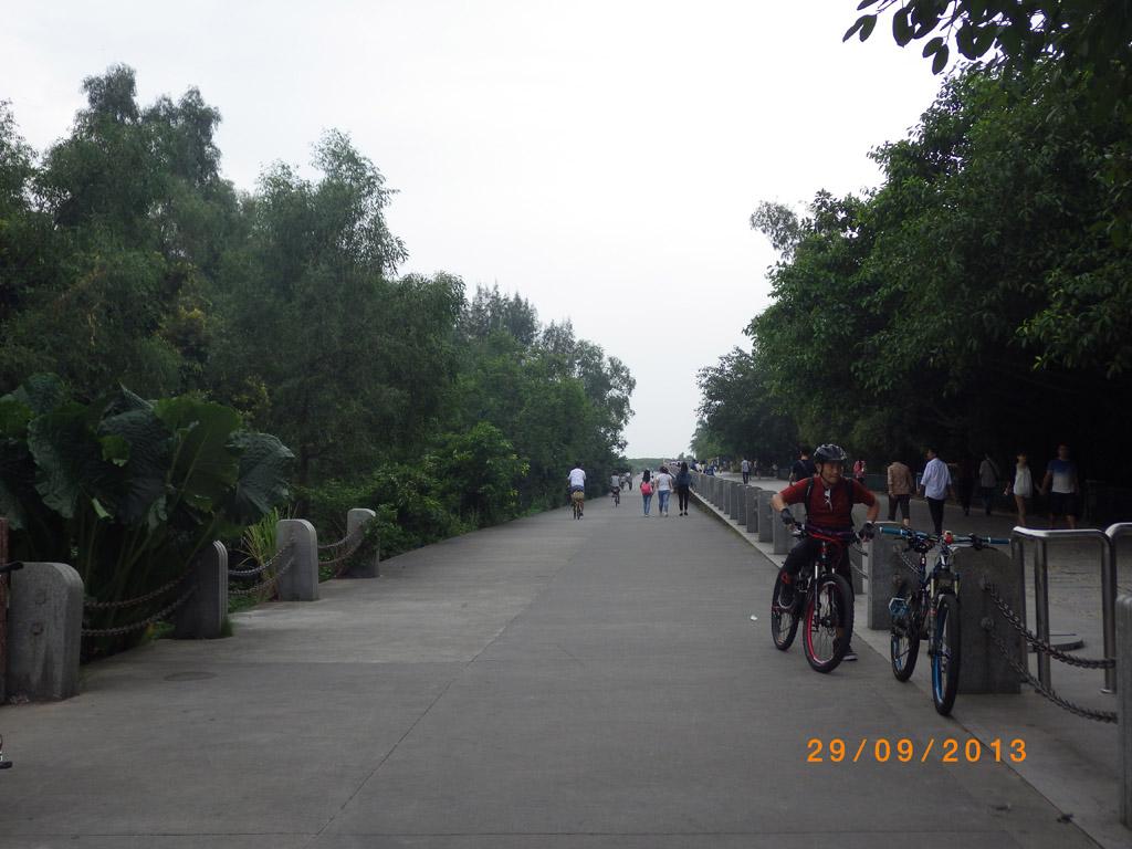 公園內綠道