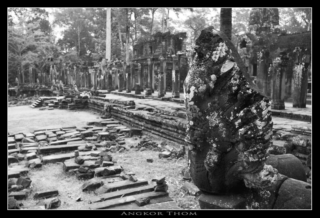 只剩下巨大的石塊和柱子散滿一地