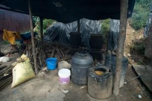 Wine is kept in buckets for fermentation