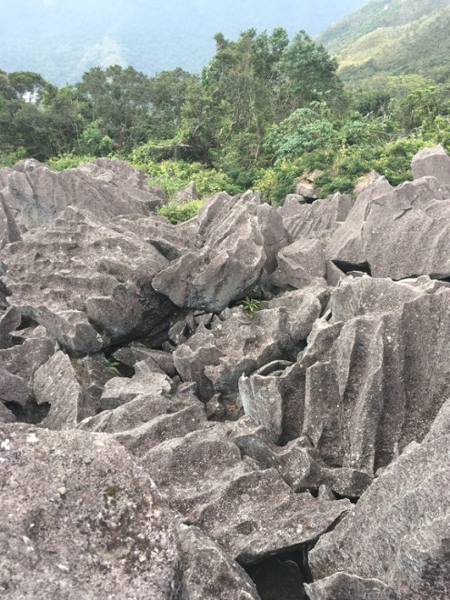 多年的風化和浸蝕,表面形成很多沖蝕溝