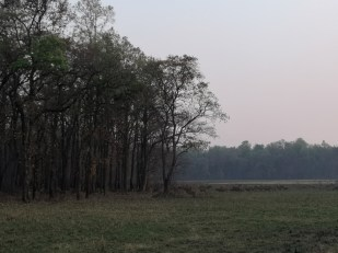 Bardia National Park [Jeep Safari]