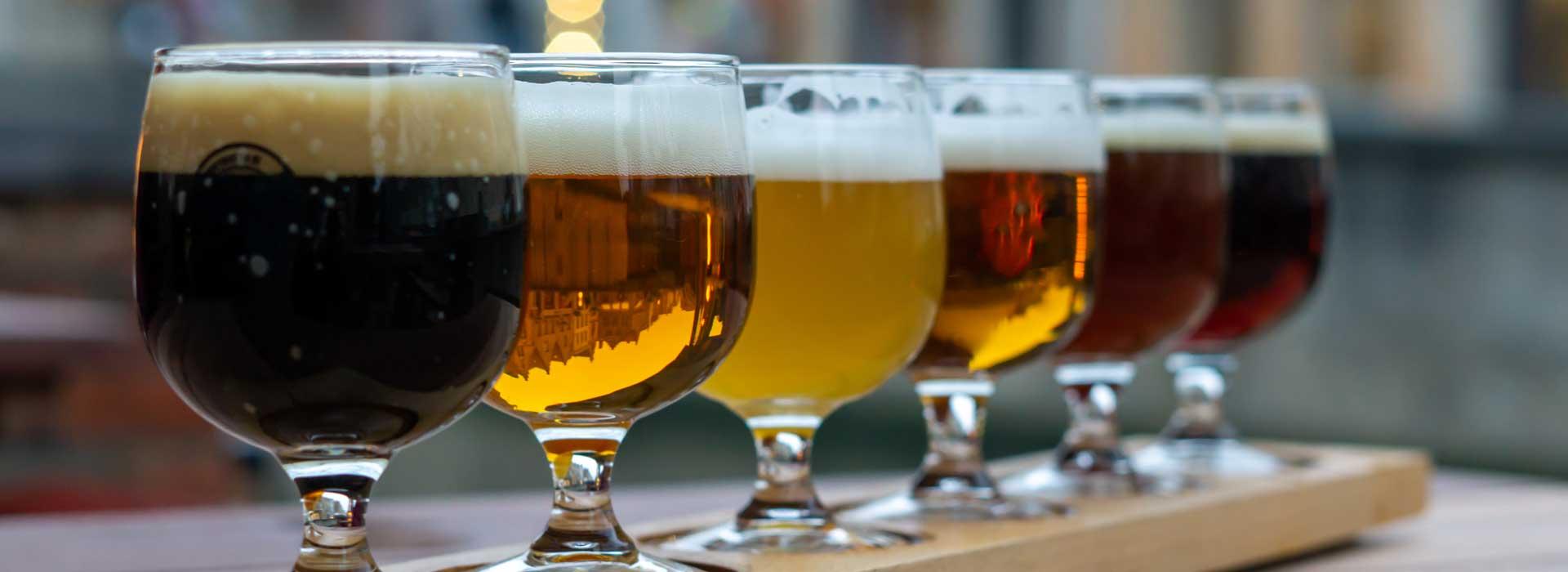 bier reviews