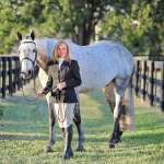 Preparing For Your Equestrian Portrait Session Deb Kalas Horse Photographer