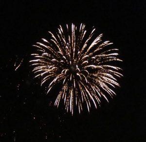 Peony Fireworks