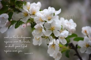 Isaiah62