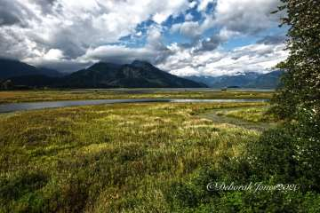 Pitt-Addington Marsh, British Columbia, Canada