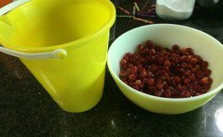 Cherries & Time