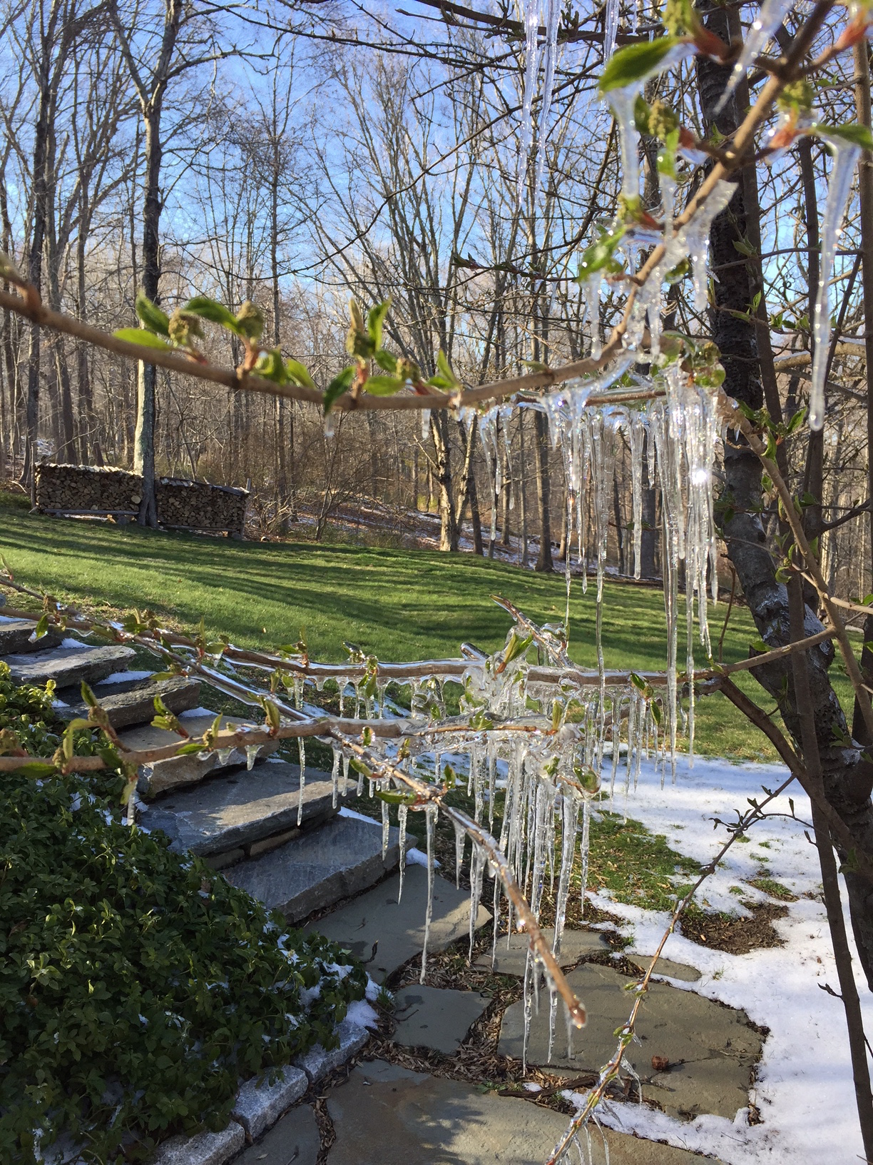 Not Just Another Spring ….