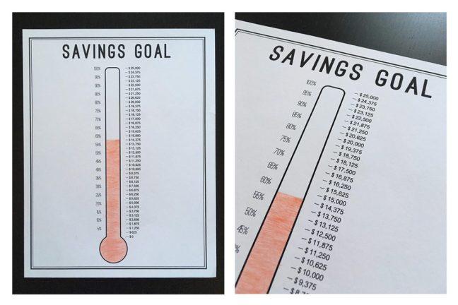 Savings Thermometer