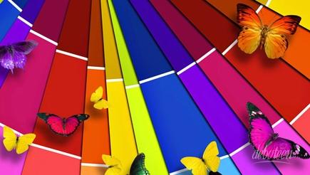 festa-tema-borboletas