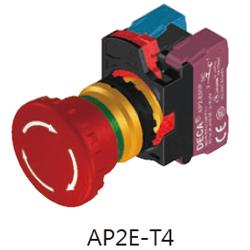AP2E-T4