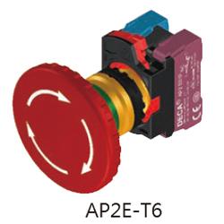 AP2E-T6