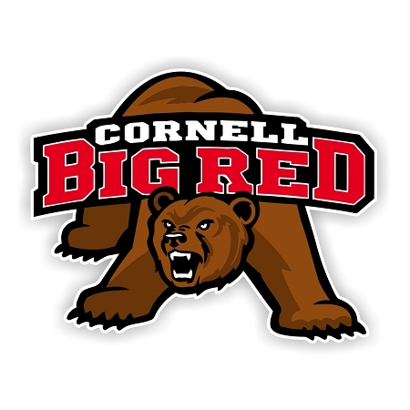 Cornell University Big Red Die-Cut Decal ** 4 Sizes