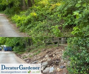 Decatur Gardener Overgrowth Clearance and River Rock Installation