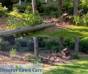 Decatur Lawn Care Tree Debris Removal Job