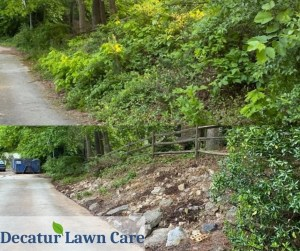 Decatur Lawn Care Overgrowth Clean Up Job