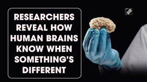 This is how the human brain differentiates the past and the present