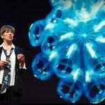 Heidi Sosik - TED talk twilightzone