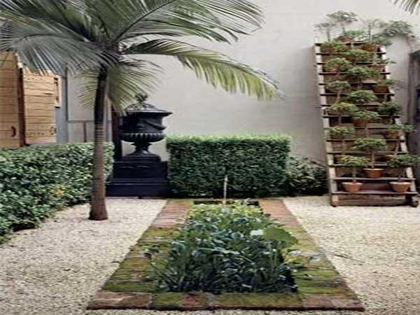 Patio De Plantes Vertes Et Palmiers Dans Un Jardin Zen