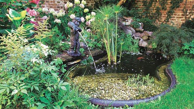 fabriquer un bassin dans son jardin