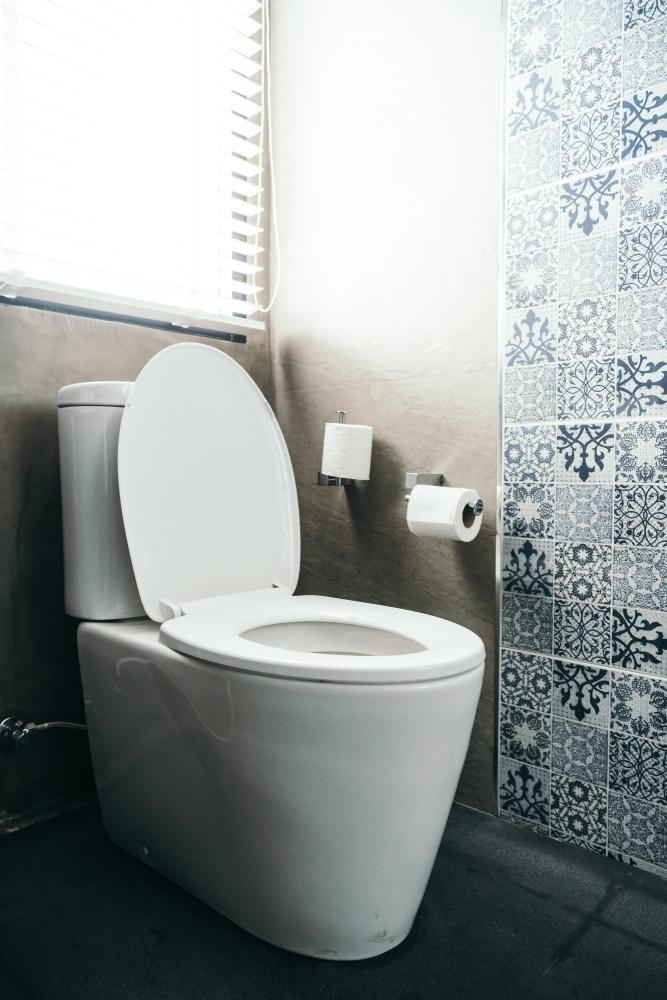ses toilettes