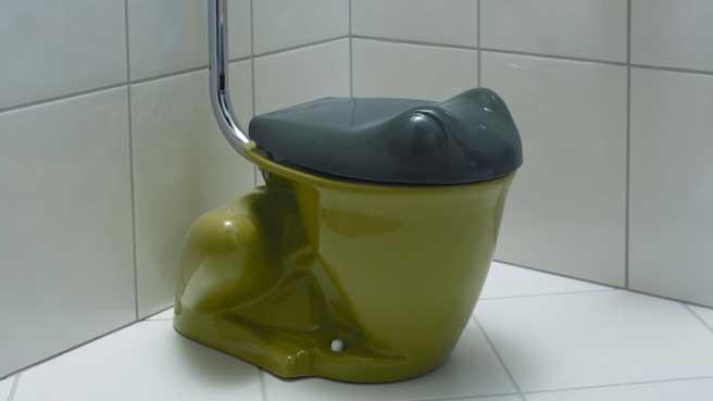 Des Toilettes Insolites A Recreer Chez Vous Diaporama Photo