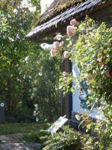 v-ascq-chaumiere-de-millam-2012R