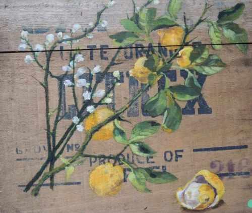 citrons sur caisse bois Aurore Janon